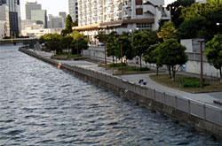 高浜運河耐震護岸整備